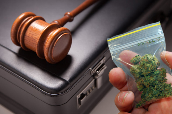 marijuana laws,drug bust,marijuana arrests,marijuana busts,marijuana charge,pot bust Texas